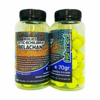 Boilies Critic Echilibrat MG Belachan  70gr