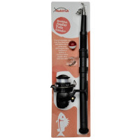 Combo Carp Zoom Multifish Junior Tele