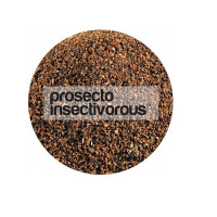 Prosecto Insectivorous Haiths