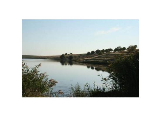 Balta Chiroiu 4 Green Lake