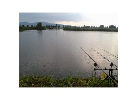 New Carp Lake / Balta Cu Movile