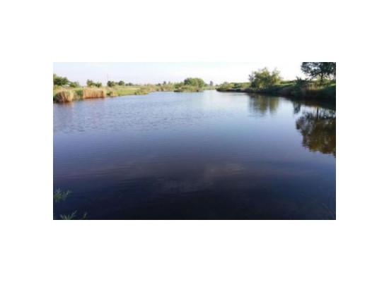 Lac Brancoveni